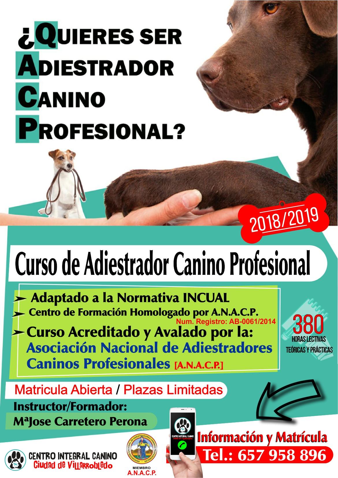Curso de Adiestrador Canino Profesional